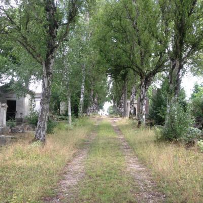 Insolite cimetières de Normandie